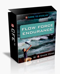 Flow Force Endurance - A Club Flow Evolution Training Program